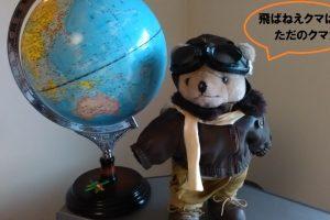 piloto oso marron