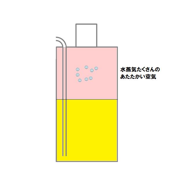 shampoo4