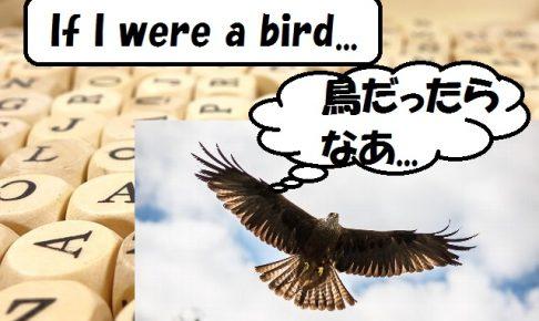 bird 仮定法過去