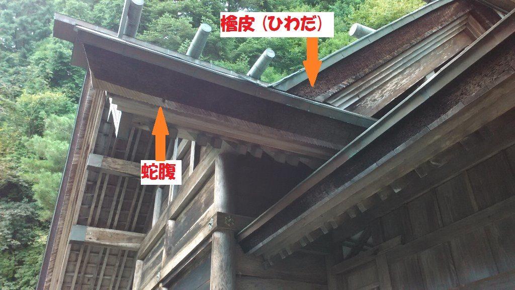蛇腹2(1)
