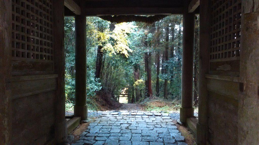 随神門から入口の鳥居