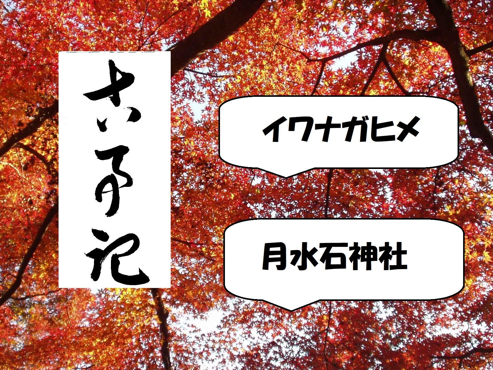 イワナガヒメ。月水石神社.jpg