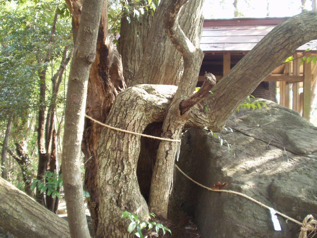 月水石神社6.jpg