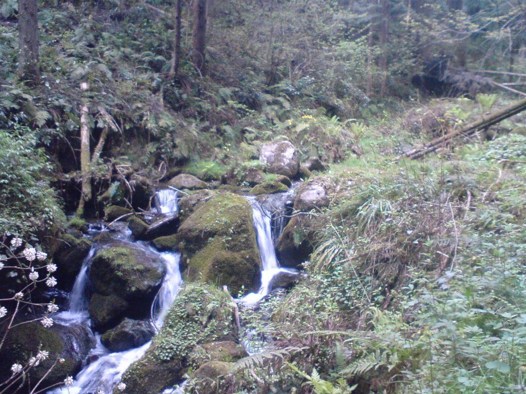 寺河内線。川