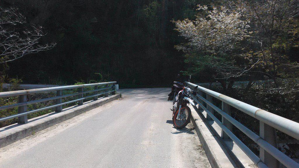野田橋。セロー2