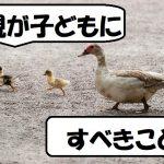ducks-204332_640