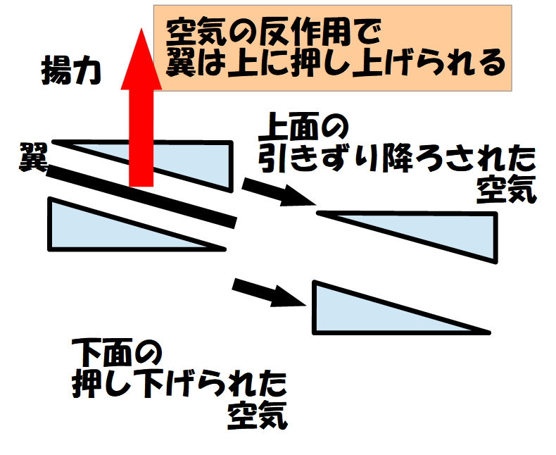 lift reaction 揚力は反作用