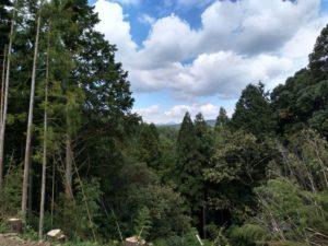 星山。木山寺の霊園から2020-09-16