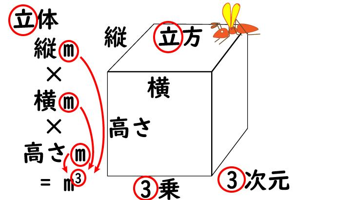 dimension-3-次元-ハチ2