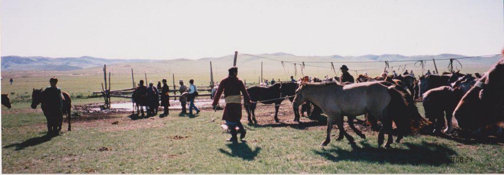 馬繋ぎ場2
