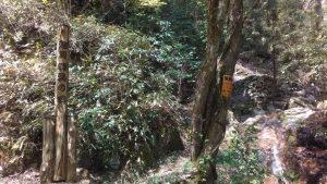 足尾滝。旭川源流の碑
