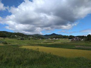 八幡宮鳥居からの景色