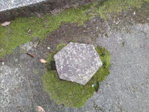六角形の敷石