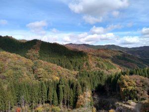 伐採広場から北側の広域基幹林道
