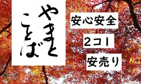 set-sale 2コ1 安心安全