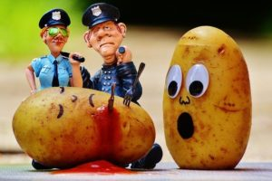 potatoes-1458569_640