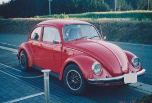 beetle 全体