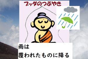 rain 雨は覆われたものに降る