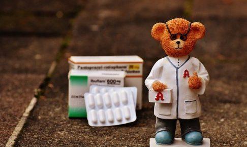 bear-1821457_640