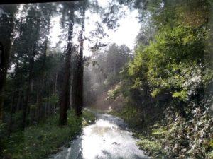 rain bright2 1024