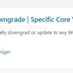 wp downgrade plugin