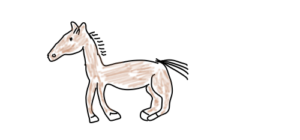 horse colored