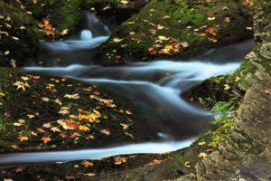 autumn-2857_640